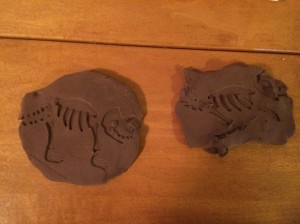 My Dinosaur Fossils - Finished Product