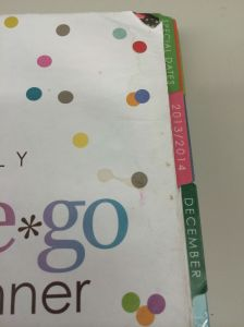 Erin Condren Life Planner - Water Damage