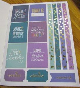Erin Condren Classic Sticker Book